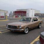 John Peterfeso 65 Mustang