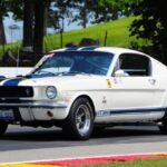 Peter T 66 Mustang